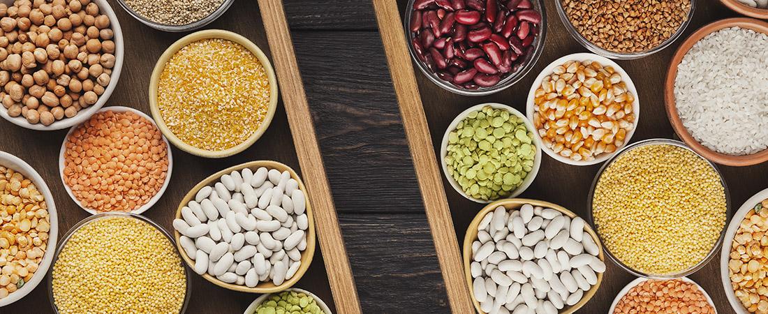 Tendencias del mercado de alimentos y semillas